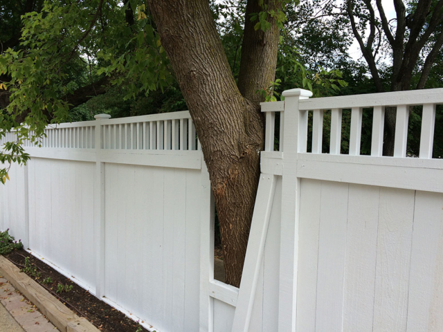 C-0701-T - Cedar Fence with Tree Baffle